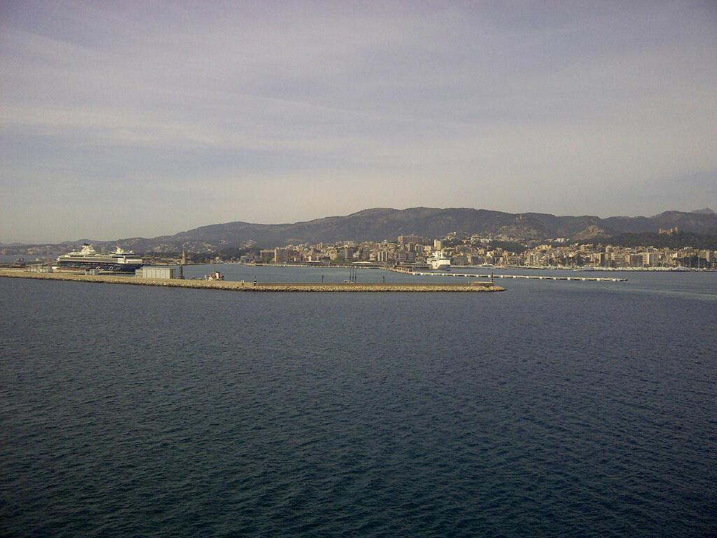 Goodbye Palma