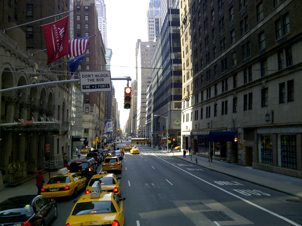 New York HoHo Bus
